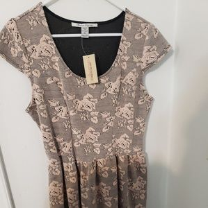 NWT American Rag Mauve Roses & Navy Dress XL